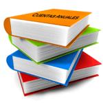 Nuevos modelos para la presentación de las Cuentas Anuales